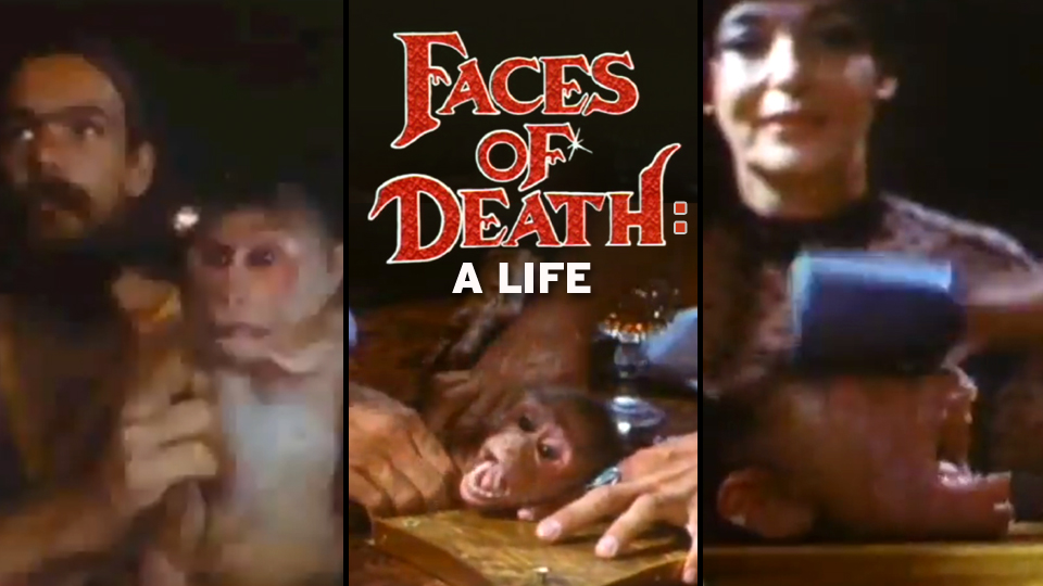 "Please Check Out My Deadspin Blood Week Story On The Creator Of ""Faces Of Death"""