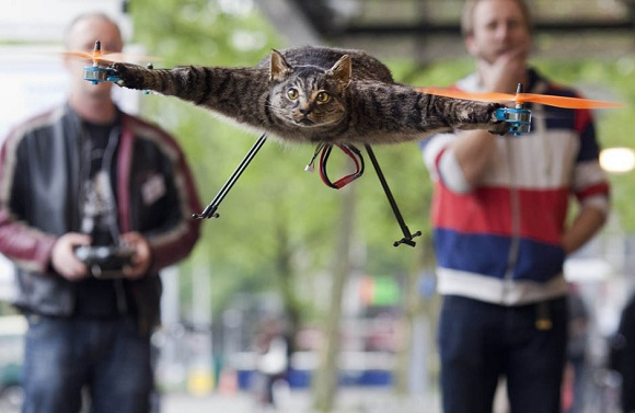 Stop Me If You've Heard This Before: Guy Turns Dead Cat Into RC Helicopter