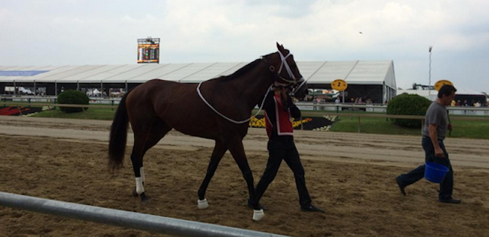 Grand Tito Goes Ham In The Pimlico Gates, Throws Whippin' Victor Espinoza