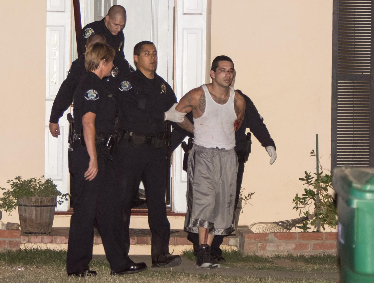 A suspect is taken into custody by Santa Ana Police after being bitten by a K9 while hiding in an attic of a home on 4th Street and Eastside Avenue after leading police on a pursuit Friday night in Santa Ana. ADDITIONAL INFORMATION: KEVIN WARN, CONTRIBUTING PHOTOGRAPHER Around 08:30 p.m. Friday night, Santa Ana police attempted to pull over a vehicle occupied by whom they believed to be a parolee at large. The vehicle failed to yield, resulting in a pursuit. Officers chased the suspect down 4th Street, at which point he drove through a temporary ÒstageÓ that was being constructed for an upcoming event, at the intersection of 4th Street & French Avenue. A 17-year-old male was struck in the head by a falling pool and was critically injured. Two other people suffered injuries as well. The vehicle eventually turned down Eastside Avenue off 4th Street, where he crashed, and bailed on foot. The suspect forced his way into an occupied home on 4th Street and was found hiding in the attic. The K9 was sent in and the suspect was bitten and taken into custody. The suspect was treated by Orange County Fire Authority Paramedics for numerous dog bites and transported to the hospital. No other injuries were reported.